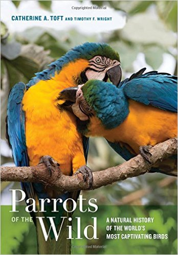 Parrots of the Wild A Natural History of the World's Most Captivating Birds