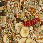 Tidymix Seed Parrot Diet