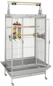 How to choose the right parrot cage
