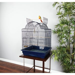 Choosing the right location for your parrot cage