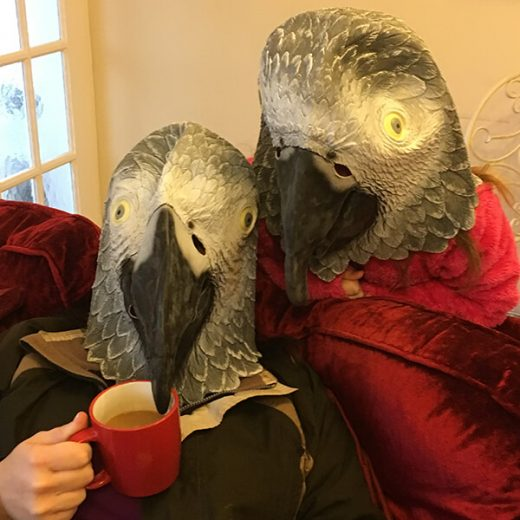 Halloween Parrot Picture Competition Entry 8