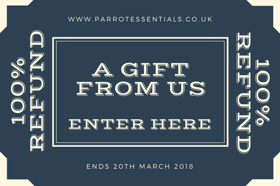 Parrot Competition - Full Refund