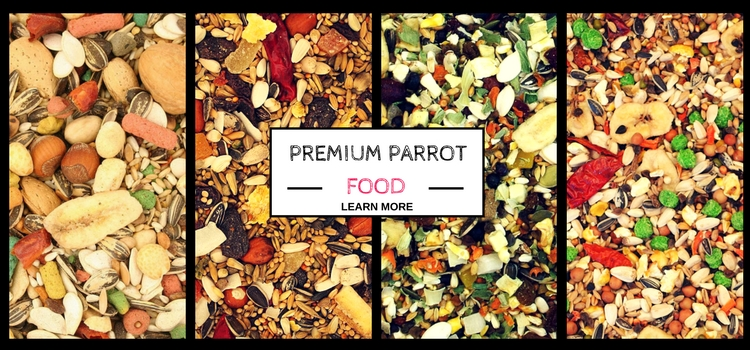 Vogel Jungle Premium Parrot Food