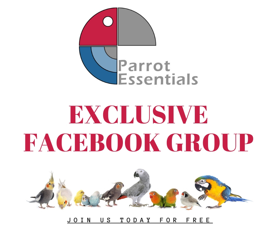 Parrot Essentials Facebook Group